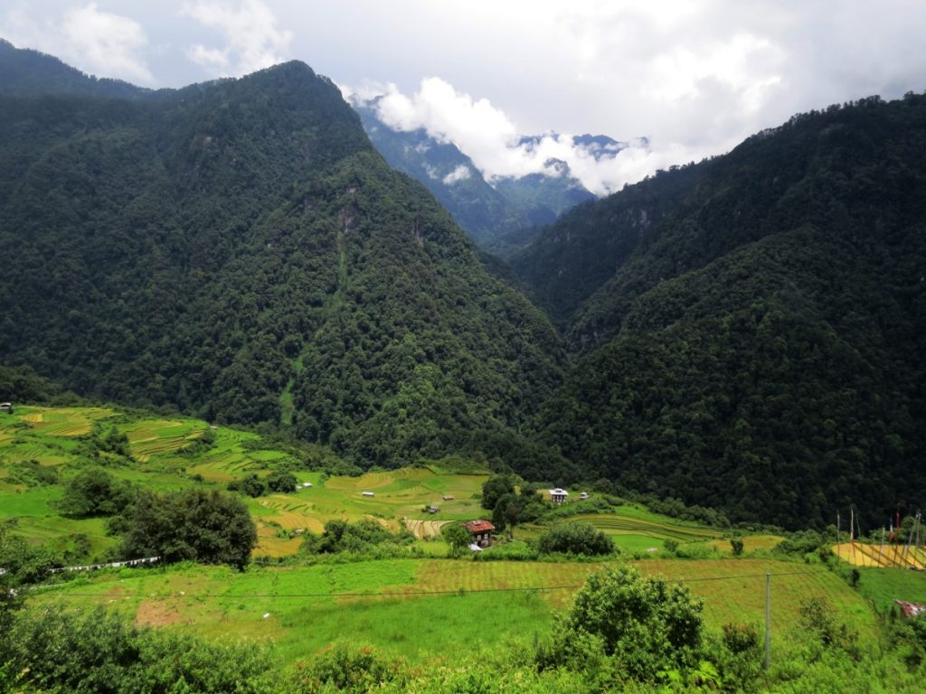 Best Bhutan Treks Densely forested mountains of Jigme Dorji